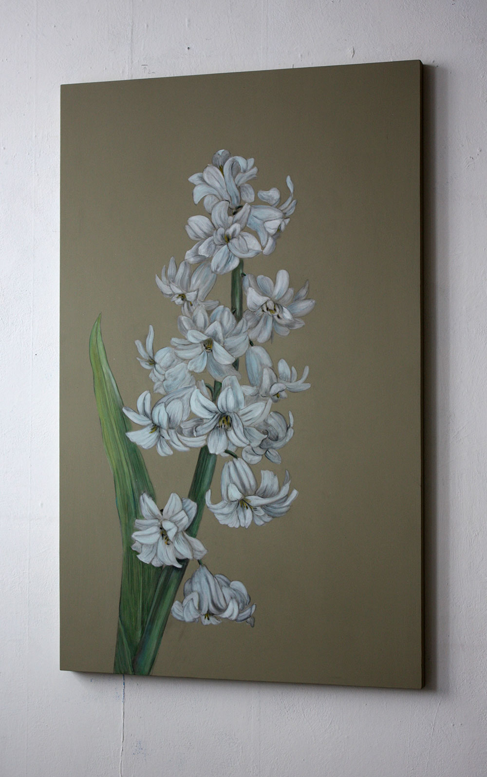 Bild Hyacinthe